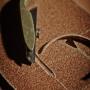 Auskehlen 7 M-Frosch Leder